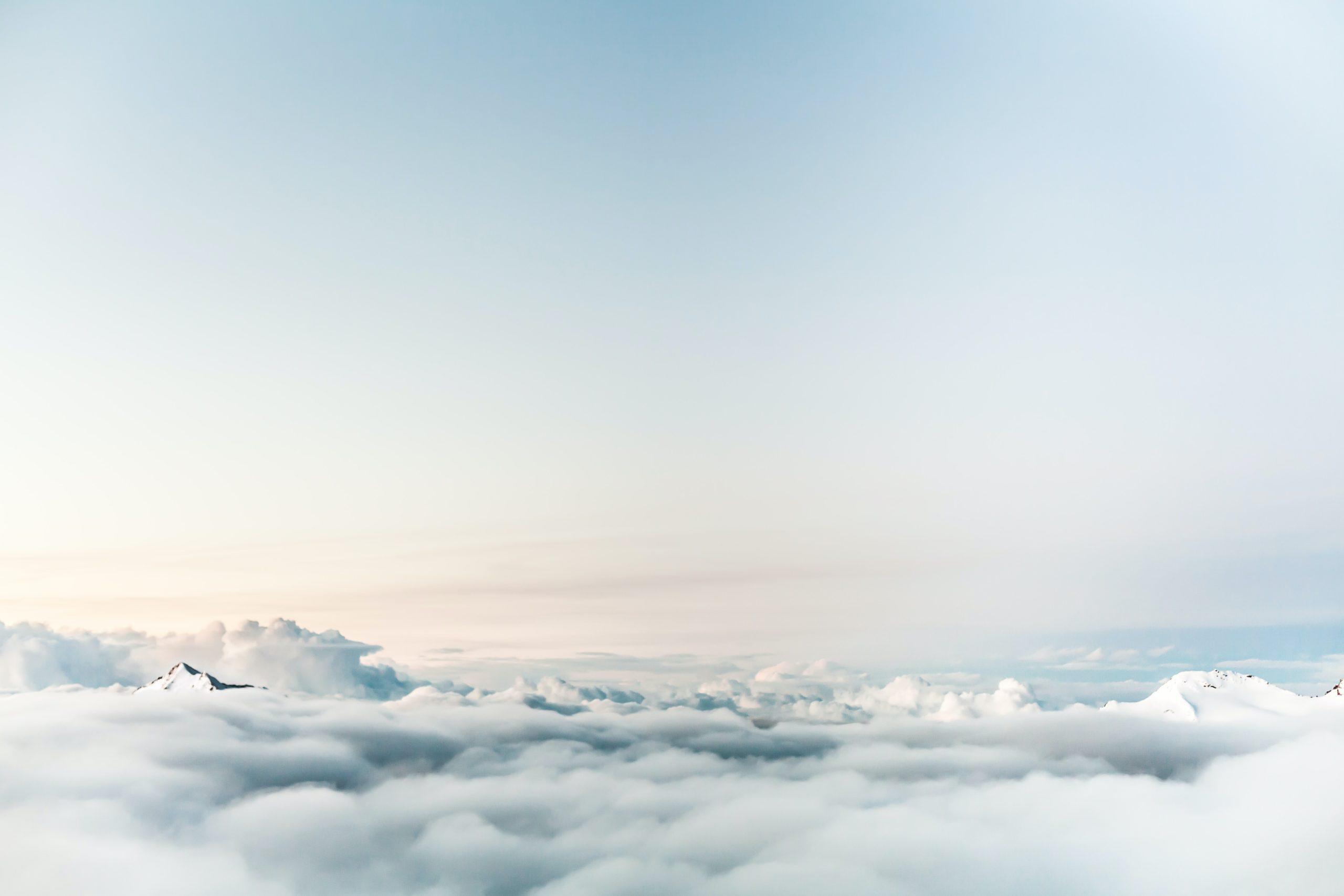 kim bolsover | Dominik Schroder on Unsplash